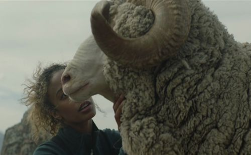 The Woolmark Company sees outdoor market boosting merino wool