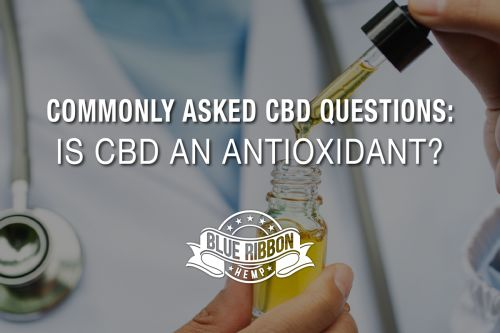 Commonly Asked CBD Questions: Is CBD An Antioxidant?