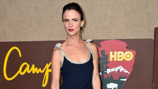 Juliette Lewis Sparkled In Her Simple Miu Miu Dress