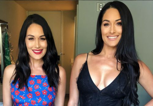 "Brie Bella Wants to Have a Baby at the Same Time as Nikki Bella: ""Get Pregnant With Me"""