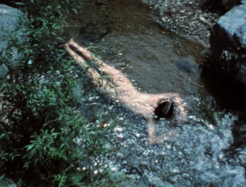 Ana Mendieta was the controversial artist who helped pioneer earth art