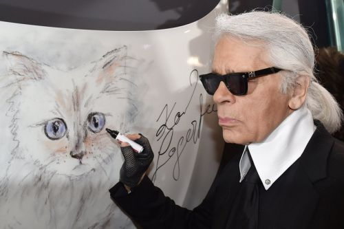 Karl Lagerfeld's Cat Choupette Could Be the Heiress of His $200 Million Fortune