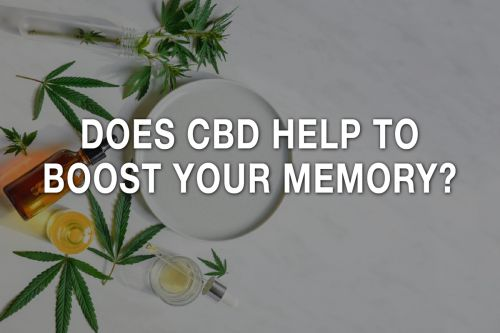 Does CBD Help to Boost Your Memory?