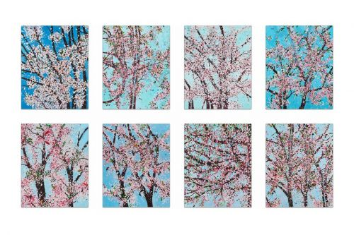 Damien Hirst Accepts Cryptocurrency Payments for New Cherry Blossom Prints