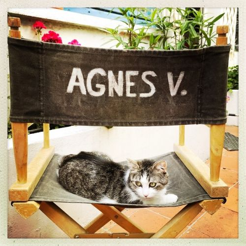 Agnes Varda passes, LVMH finalists, Love Ball in Qatar and more news you missed