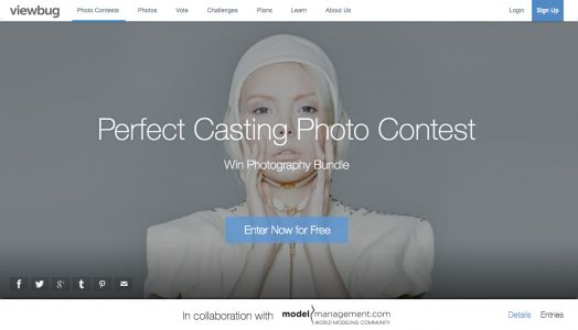 The Perfect Casting Photo Contest!