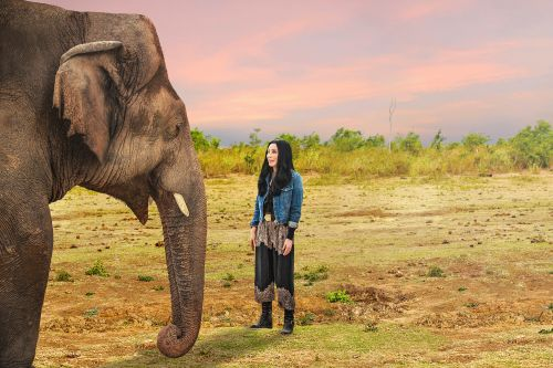 Cher on how she helped save 'World's Loneliest Elephant'
