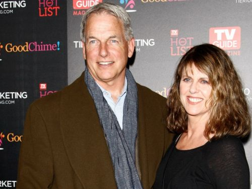 Marriage, Success & A Custody Battle - Inside Mark Harmon's Private Life