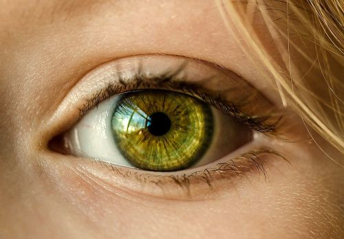 How to take care of your eyesight in four simple steps
