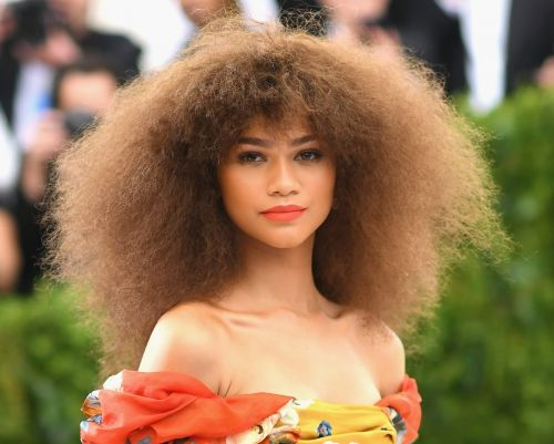 Great Outfits in Fashion History : Zendaya's Voluminous, Brushed-Out Afro at the 2017 Met Gala