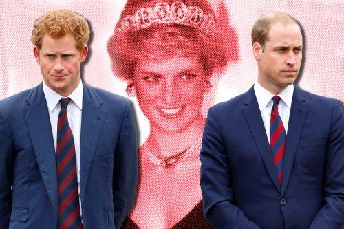 William and Harry's royal rift was sealed by fate - and Diana, says author