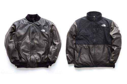 The North Face Japan Remixes Staple Winter Outerwear With GORE-TEX INFINIUM