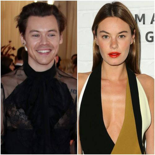 Camille Rowe's Voicemail at the End of New Harry Styles Song 'Cherry' Gives Us All the Feels