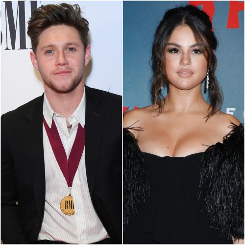 Selena Gomez's Rumored Flame Niall Horan Sends Love Amid New Single and We're ~Boarding the Ship~