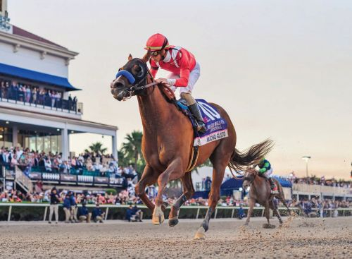The Pegasus World Cup Kicks-Off This Weekend: Here's What You Need To Know