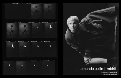 "Interview | amanda collin's ""rebirth"""