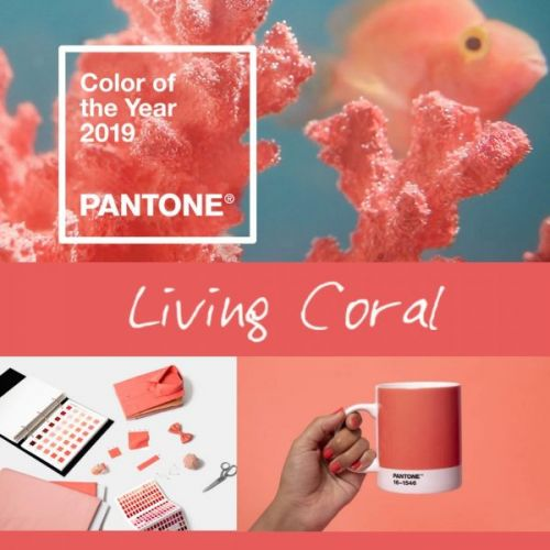 Living Coral - Color of the Year 2019
