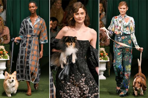 Pups pranced down a Westminster-inspired runway at NY Fashion Week