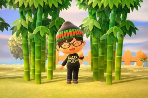 Fashion addicts use Animal Crossing to create hilarious virtual outfits