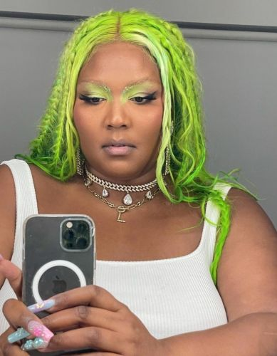 No, Lizzo did not kill a fan by stage-diving on them