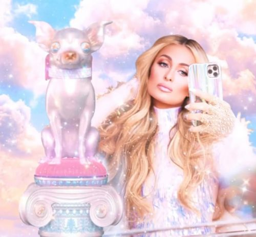 Loves it! Paris Hilton is making a return to reality TV