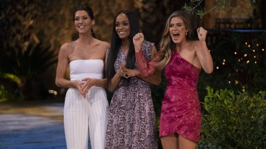 'The Bachelorette' Reunion Special Is Almost Here: Catch Up on All Your Favorite Past Ladies!