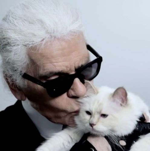 Karl Lagerfeld's cat Choupette will apparently inherit some of his fortune