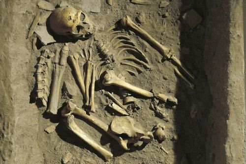 Scientists Have Discovered the Remains of a 90,000 Year-Old
