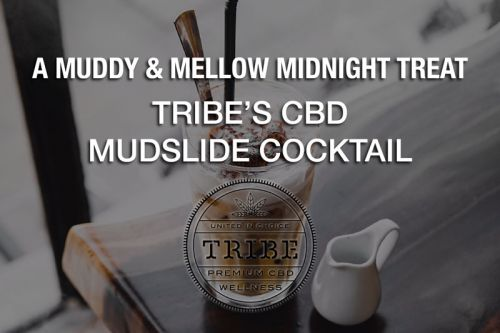 A Muddy & Mellow Midnight Treat - Tribe's CBD Mudslide Cocktail