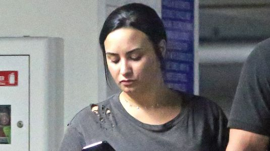 Demi Lovato Claps Back At A Fan Who Called Her Team 'Rotten' Amid Dani's Firing