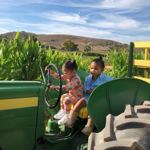 Kylie Jenner Takes Stormi Webster, Dream Kardashian and True Thompson to a Pumpkin Patch - Photos!