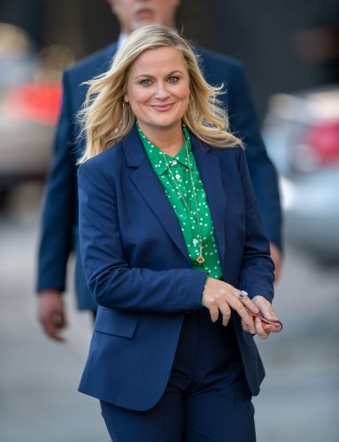 Comedy Legend Amy Poehler's Crazy Net Worth Is Nothing to Laugh At, Folks