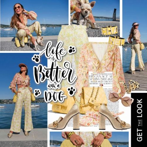 My Look: Life Is Better With a Dog