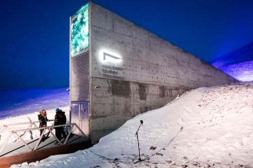 Doomsday Music Vault to Be Constructed in Arctic Island Near North Pole