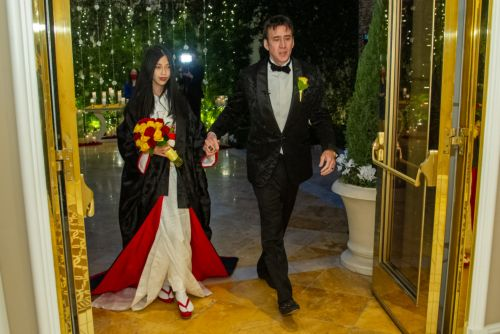 Nicolas Cage marries fifth wife, 26-year-old Riko Shibata