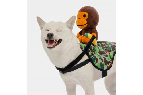 Baby Milo's FW19 Pet Collection Features Camo-Heavy Accessories