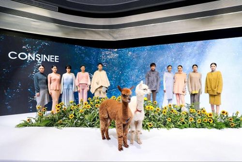 China's Leading Yarn Exporter Partners with South American Alpaca Industry