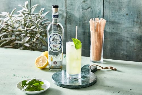 Jose Cuervo Offers Biodegradable Agave-Based Straws for National Tequila Day